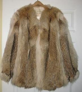 Pictures-of-WolfCoyote-fur-coat