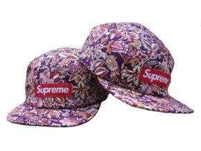 Supreme Snapback Hat&Cap (14)